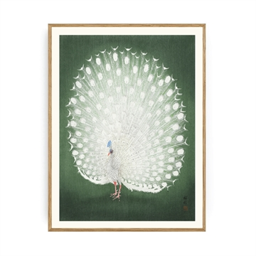 Spliid - Peacock Green - Plakat - 30x40cm